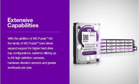 wd-purple-05