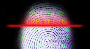 Encryption keys are generated from fingerprints through algorithm